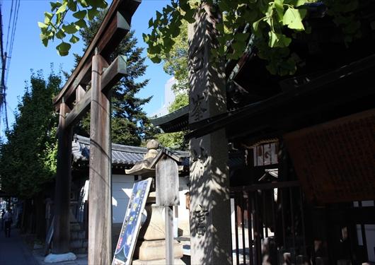 白峯神宮の鳥居