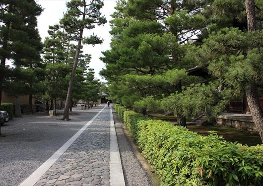大徳寺の境内