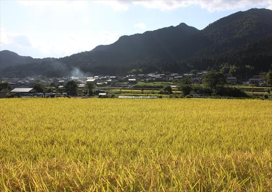 京都大原の田園風景