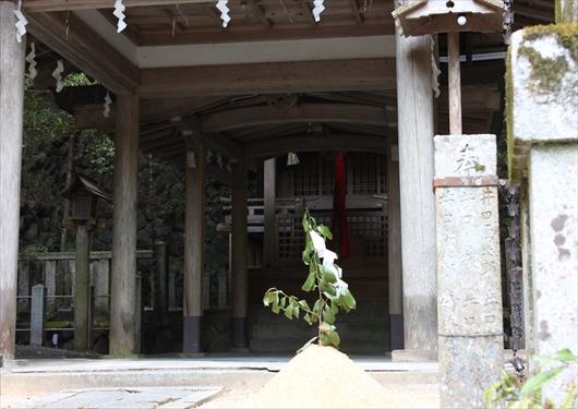 崇道神社の本殿
