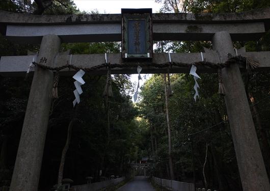 崇道神社の参道