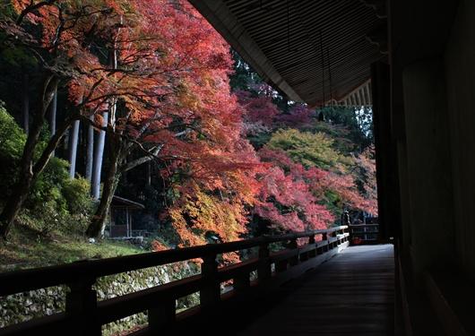 勝林院と紅葉