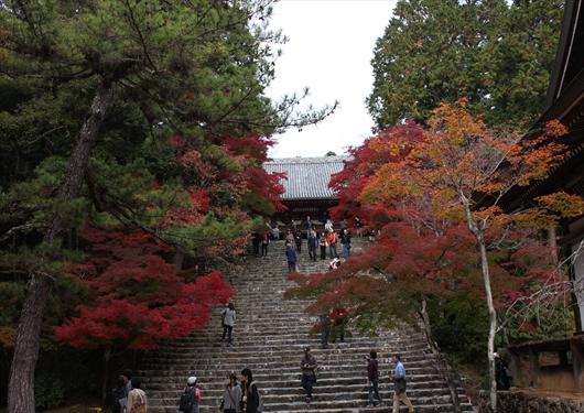 神護寺本堂