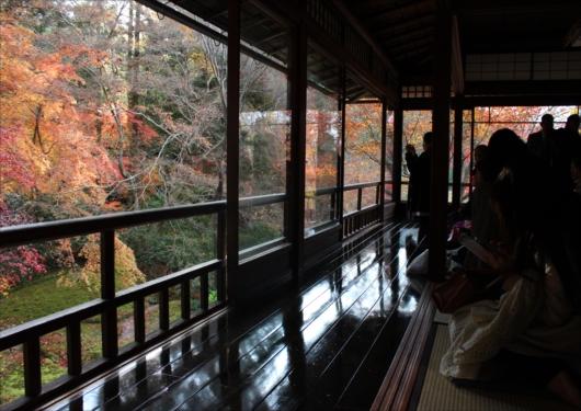 瑠璃光院の紅葉反射部屋
