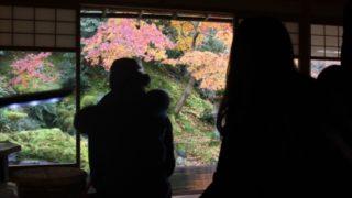 瑠璃光院の紅葉時の混雑状況