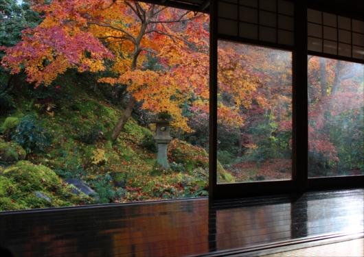 瑠璃光院紅葉