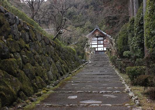 正伝寺参道