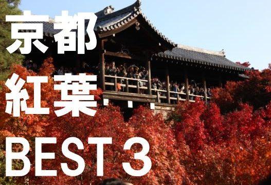 京都紅葉BEST3