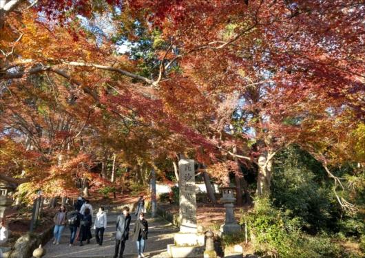 毘沙門堂門跡の紅葉