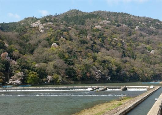 渡月橋から嵐山