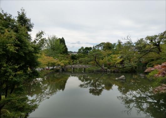 永観堂放生池