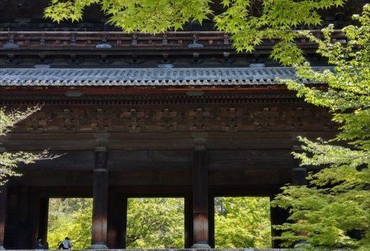 青もみじの南禅寺三門