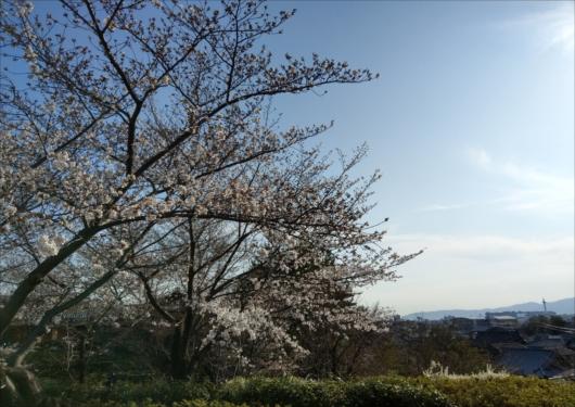 高台寺駐車場と京都タワー