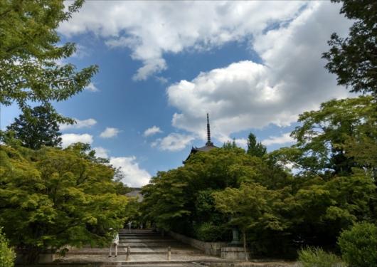 真如堂と新緑の参道